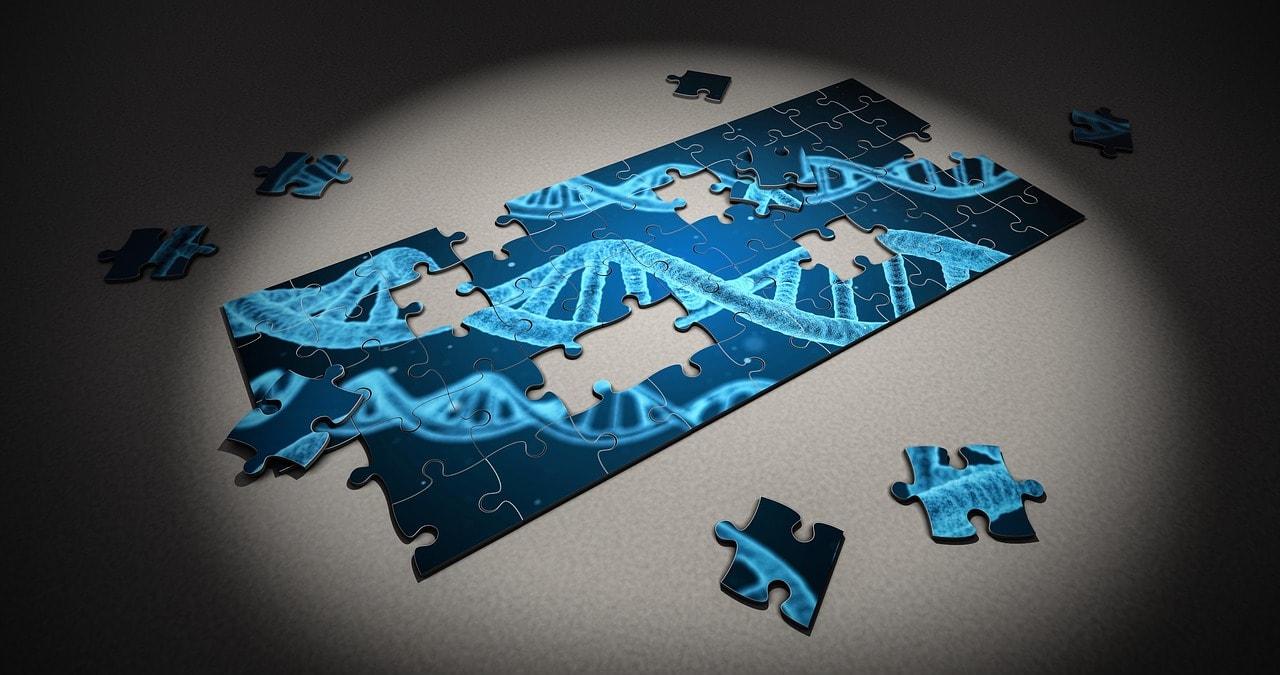 enfermedades genéticas humanas